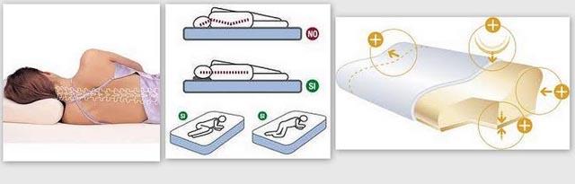 Importancia de la almohada - Cuales son las mejores almohadas para las cervicales ...
